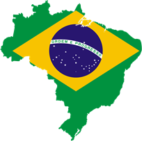 brazil domain name register